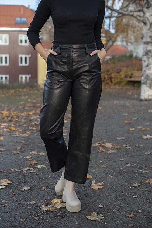 Anine Bing Leah Leather Pant Black skinnbukse