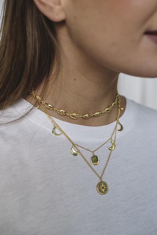Multi Shell Choker Necklace